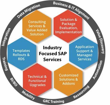 SAP Service, एसएपी कंसलटेंट, एसएपी