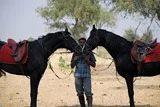 Equestrian Program at Rohet Garh