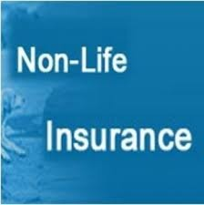 Information For Non Life Insurance Services