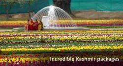 Incredible Kashmir Packages