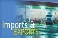 Import/export Customs Consultant