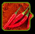 Red Chillies Spice Powder