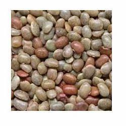 Horse Gram Seeds