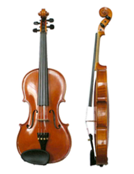 Violin In Hyderabad Telangana Get Latest Price From