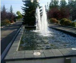 Fiber Golden Geyser Fountains