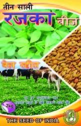 Cattle Feed Seeds