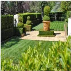 Corporate Horticulture Services