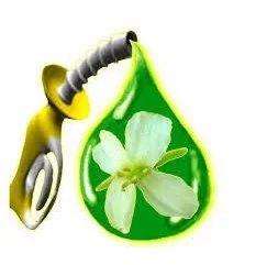 Bio Fuel For Heating