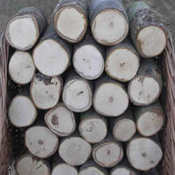 Silverwood Round Log