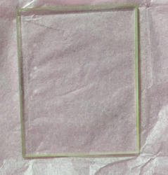 Fresnel Birpism