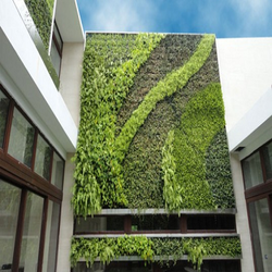 Green Walls At Best Price In India