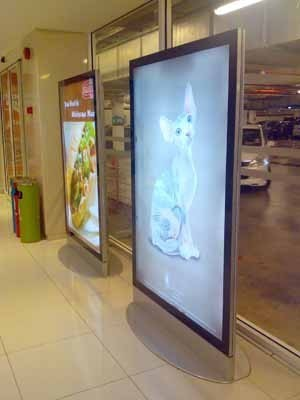 LED Backlit Light Box, Led Display Board & Light Boxes | Siquis