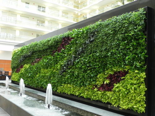 vertical-garden-or-green-living-wall-500x500.jpg