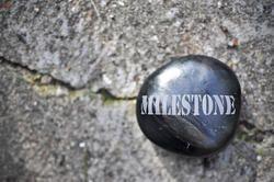Company Milestones