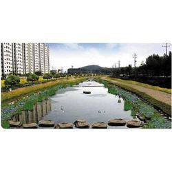 River Restoration Treatment