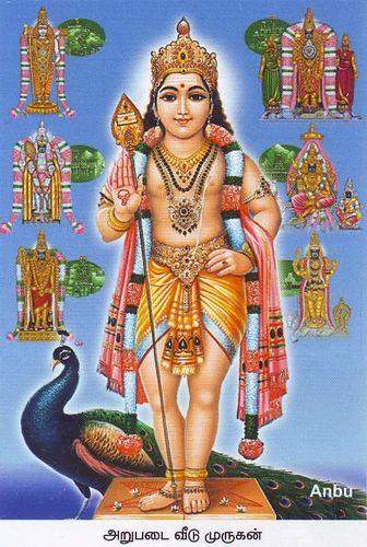 Arupadai Veedu Tour in Thiruvanmiyur, Chennai | ID: 7047246612