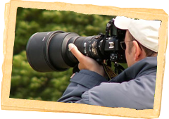 WildLife Photography/Workshop