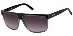 Carrera Sunglasse