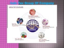 Our Group Companies
