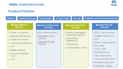 Managed Network Services, Infrastructure Services,