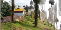 Sikkim Trek, Dzongri Trek