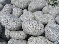 Natural Oasis Granite Pebbles For Landscaping Rs 45 Unit Id