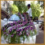 Car decoration services in ahmedabad car flower decoration junglespirit Choice Image