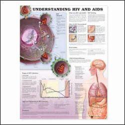 Medical Charts