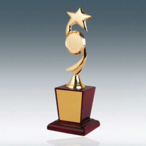 Gold Star Trophy Metal