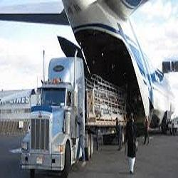 Pacific International Moving Services