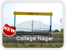 College Nagar