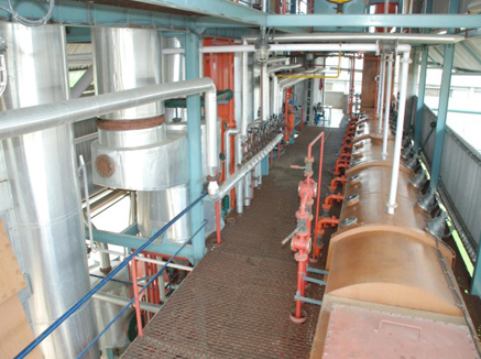 Industrial factory creams with vegetable oils