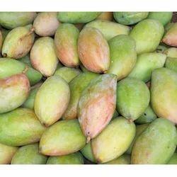 Raw Green Mango Totapuri