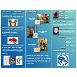 pamplet designs