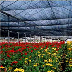 Nursery Netting Agricultural Shade Net