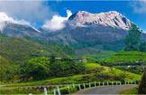 Picnic spot Nellyampathi Hills
