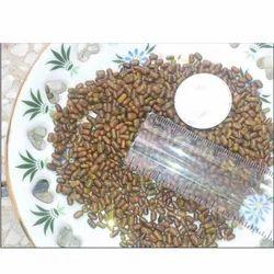 Sesbania Aculeata Seed
