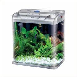 Home GArden Aquarium
