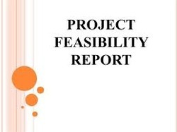 Project Feasibility Report Services
