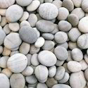 White River Pebbles Stone