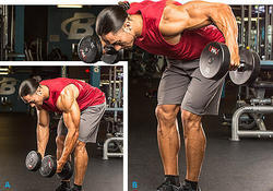 Standing Bent Over With Dumbbells Fitness Club