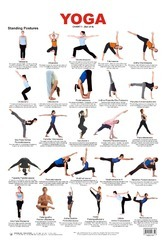 Yoga Publications - Service Provider of Yoga Charts & Health