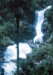 Irpu Falls Package Tours, टूर पैकेज, यात्रा