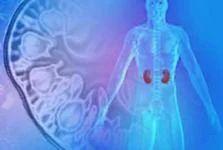 Nephrology Treatment