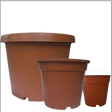 IndiaMART : types of flower pots - startupinsights.org