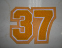 37 Number Patch