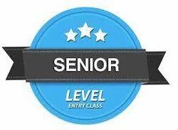 senior level