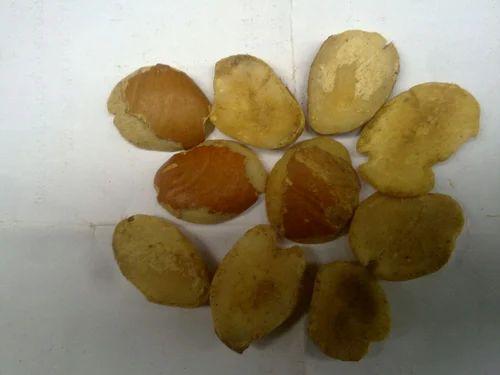 African Mango Seeds आम क ग ठल In Model Basti Delhi