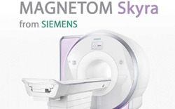MRI Scan 3 Tesla Investigation Service