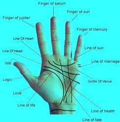 Palmistry Services Palmistry Job Work In Navi Mumbai